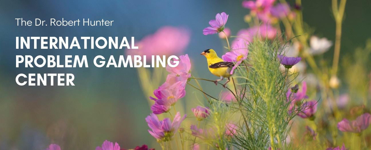 hotline gambling gaithersburg addiction